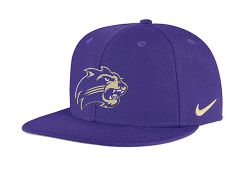 Catamount Logo Hat