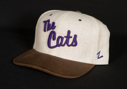 The Cats Hat