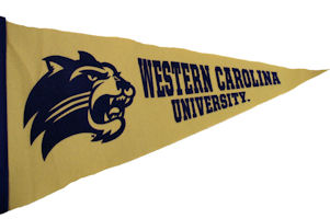 "Pennant (Gold, 12"" X 30"")"