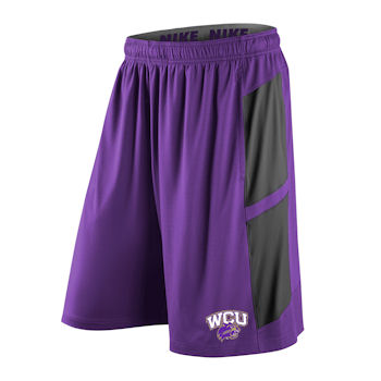 Shorts (Purple with Grey Panels, Nike)