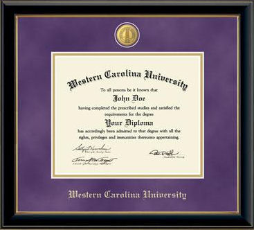 Image For Purple Suede Medallion Diploma Frame